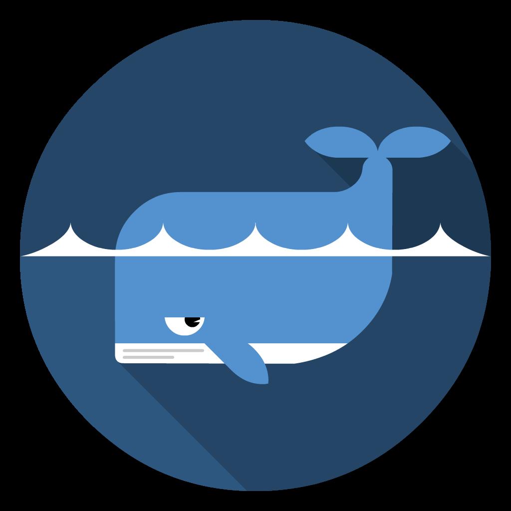 Docker flat icon