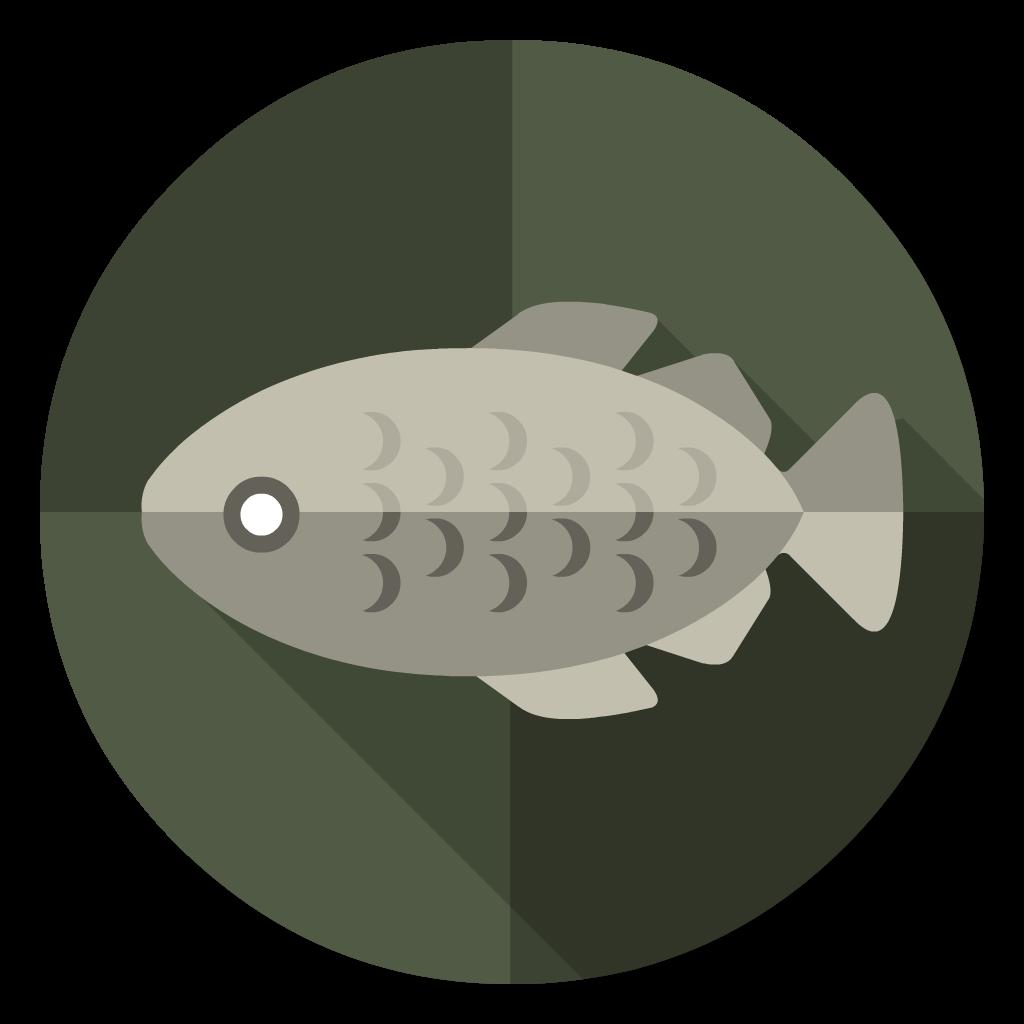 Stockfish flat icon