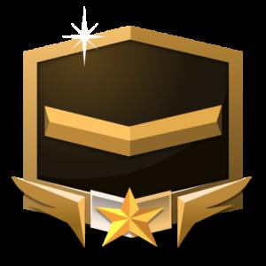 Rank Bronze **** flat icon