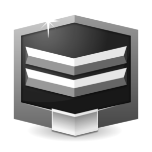 RANK SILVER ** flat icon