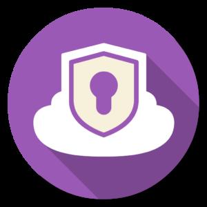 Private VPN flat icon